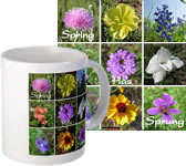 Texas Wildflowers Mug